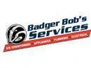 Badger-Bobs_6ecf25d3e9507ffb0cc9d04141dd1e60